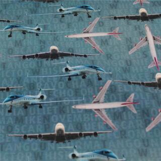 Flugzeug Panel und Kombi