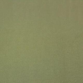 Modal Jersey fein staubgrün